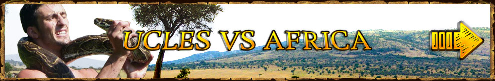 Watch Ucles Vs Africa