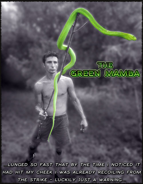 andrew-ucles-green-mamba-pose